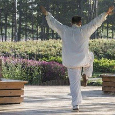Tai chi chuan et psychomotricité : une approche commune corps-esprit