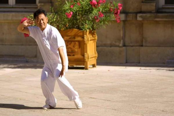 Tai-Chi Lyon I Zheng Xu Dong