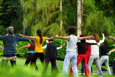 Association culturelle de Tai Chi Chuan traditionnel de Torcy